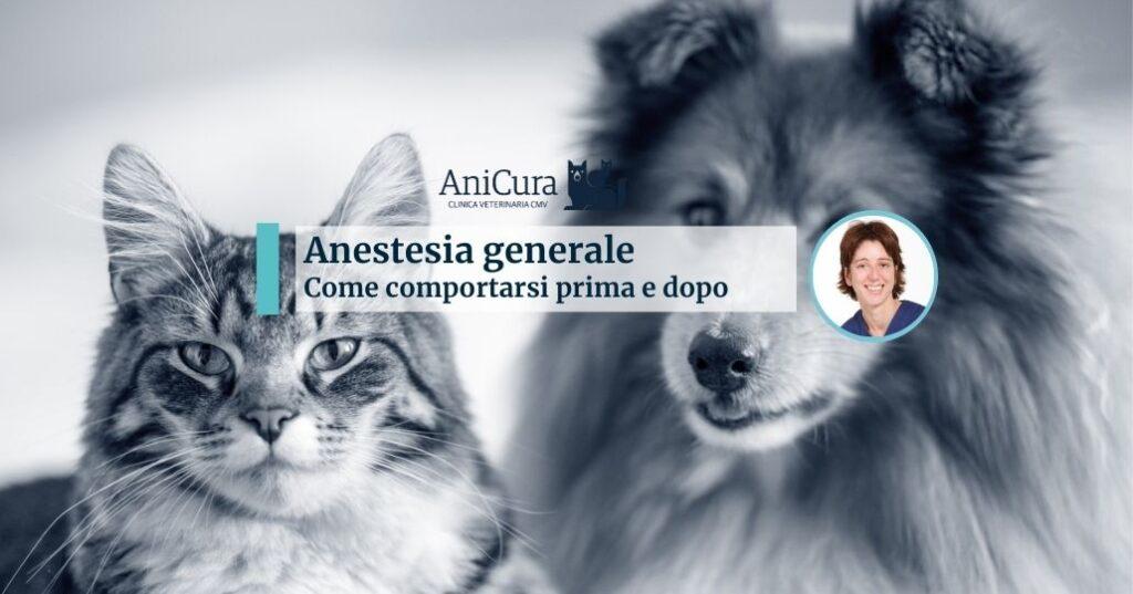 anestesia generale cane e gatto