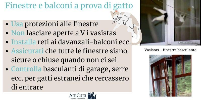 Finestre A Vasistas Un Pericolo Per I Gatti Clinica Veterinaria Cmv Varese